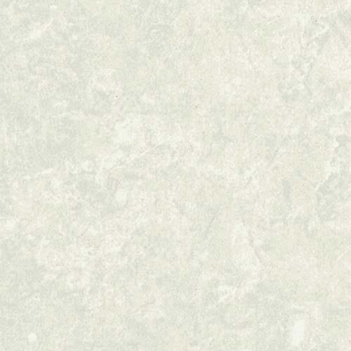 Antarctic Stone